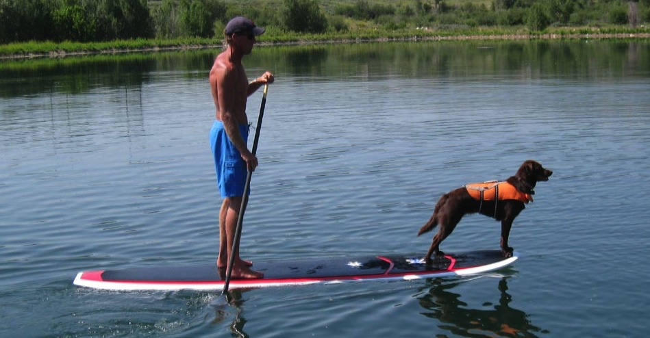 Paddle Board Big Enough For Dog